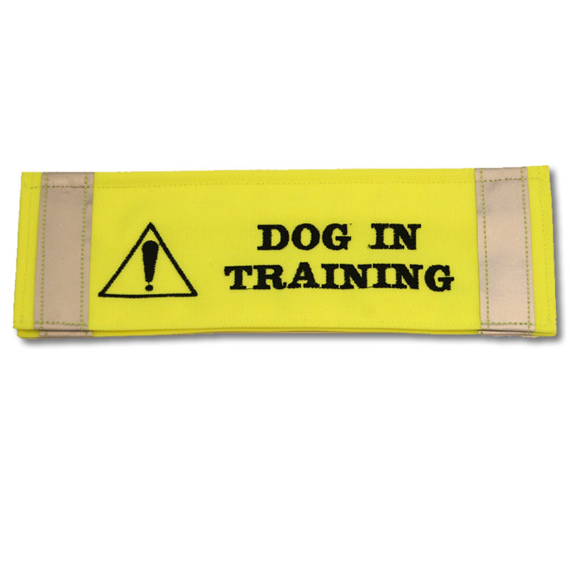 How Much To Train A Dog Uk