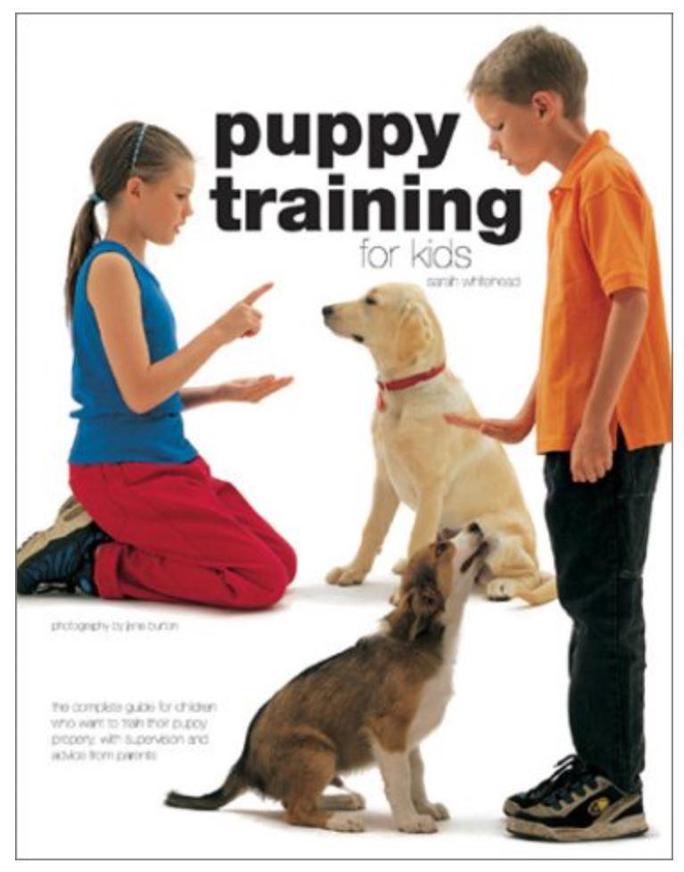 Dog Training Swindon